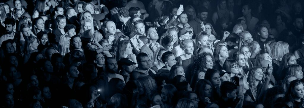 Crowd at a concert - Site Visibility Podcast | Audiences hero image