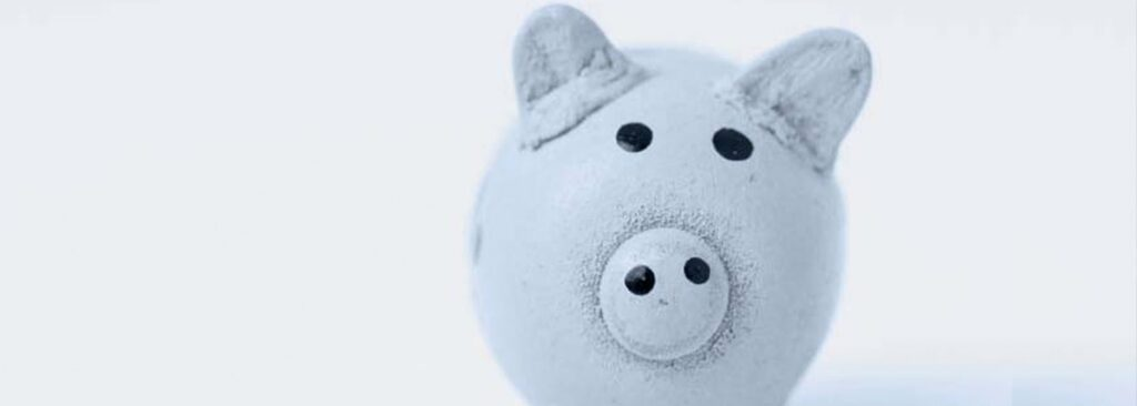 Piggy Bank - Total Cost of Ownership hero image