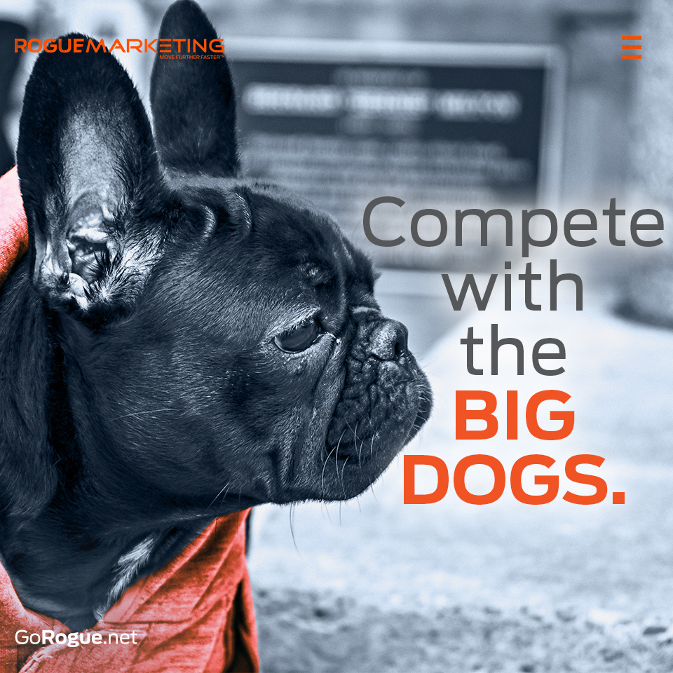 compete with the big dogs rogue marketing quotable