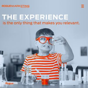 experience rogue marketing quotable