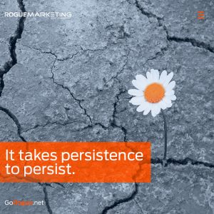 Marketing growth takes persistence